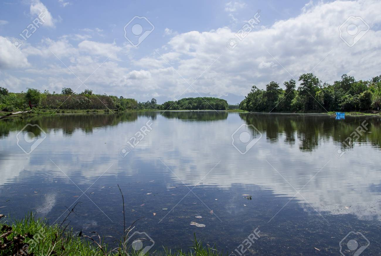 river and blue sky Stock Photo - 18175735