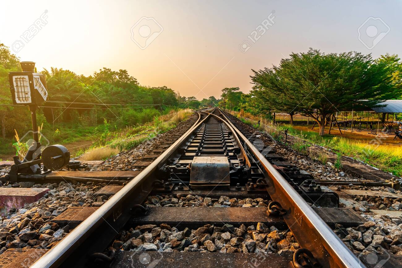 Railroad and railway train transportation with color of sky sunlight in forest background - 128225368