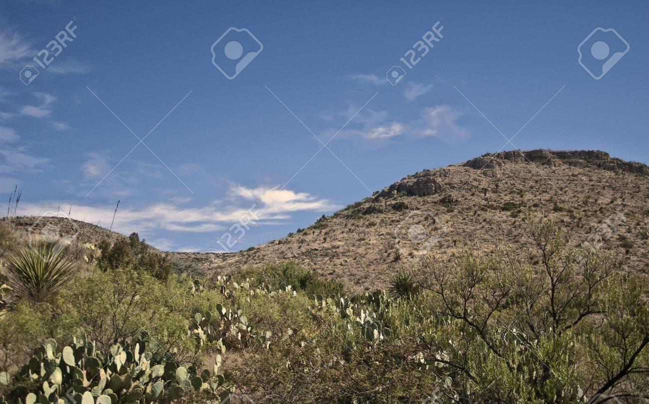 Desert Scenery from Carlsbad Caverns National Park Stock Photo - 5755885