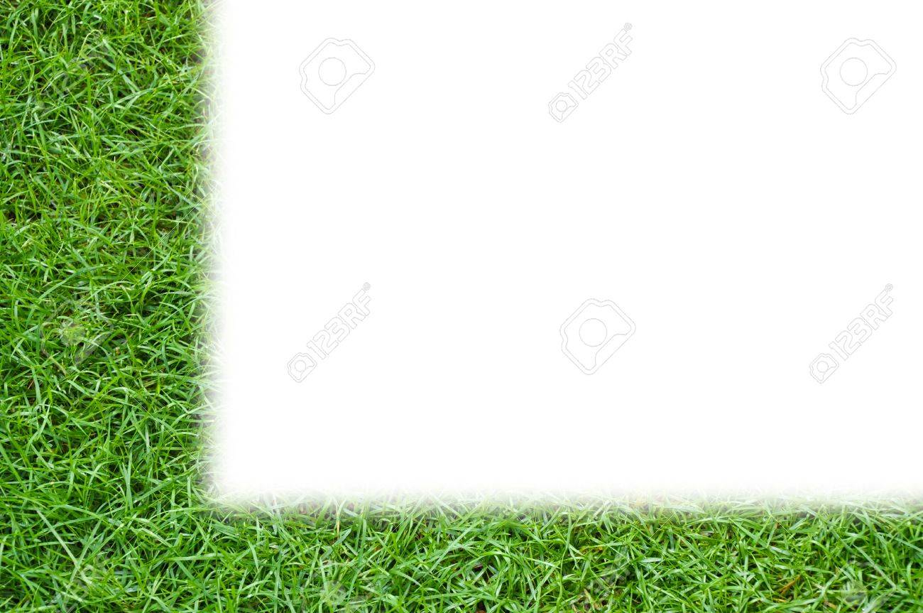 Simple Template Green Grass Background Isolated Stock Photo, Picture ...