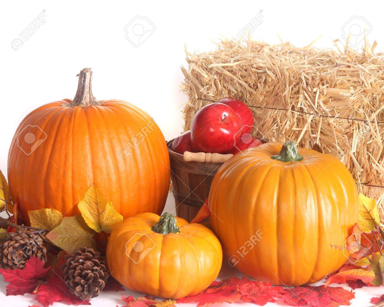 fall harvest scene with pumpkins apples and colored leaves stock