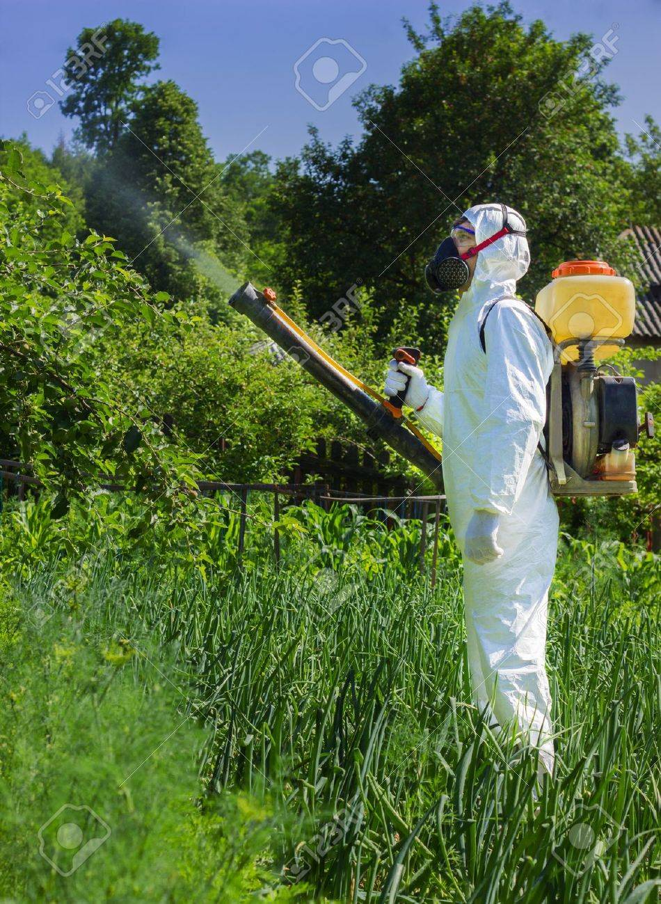 Country Farmer Spraying Insecticide In His Garden Stock Photo