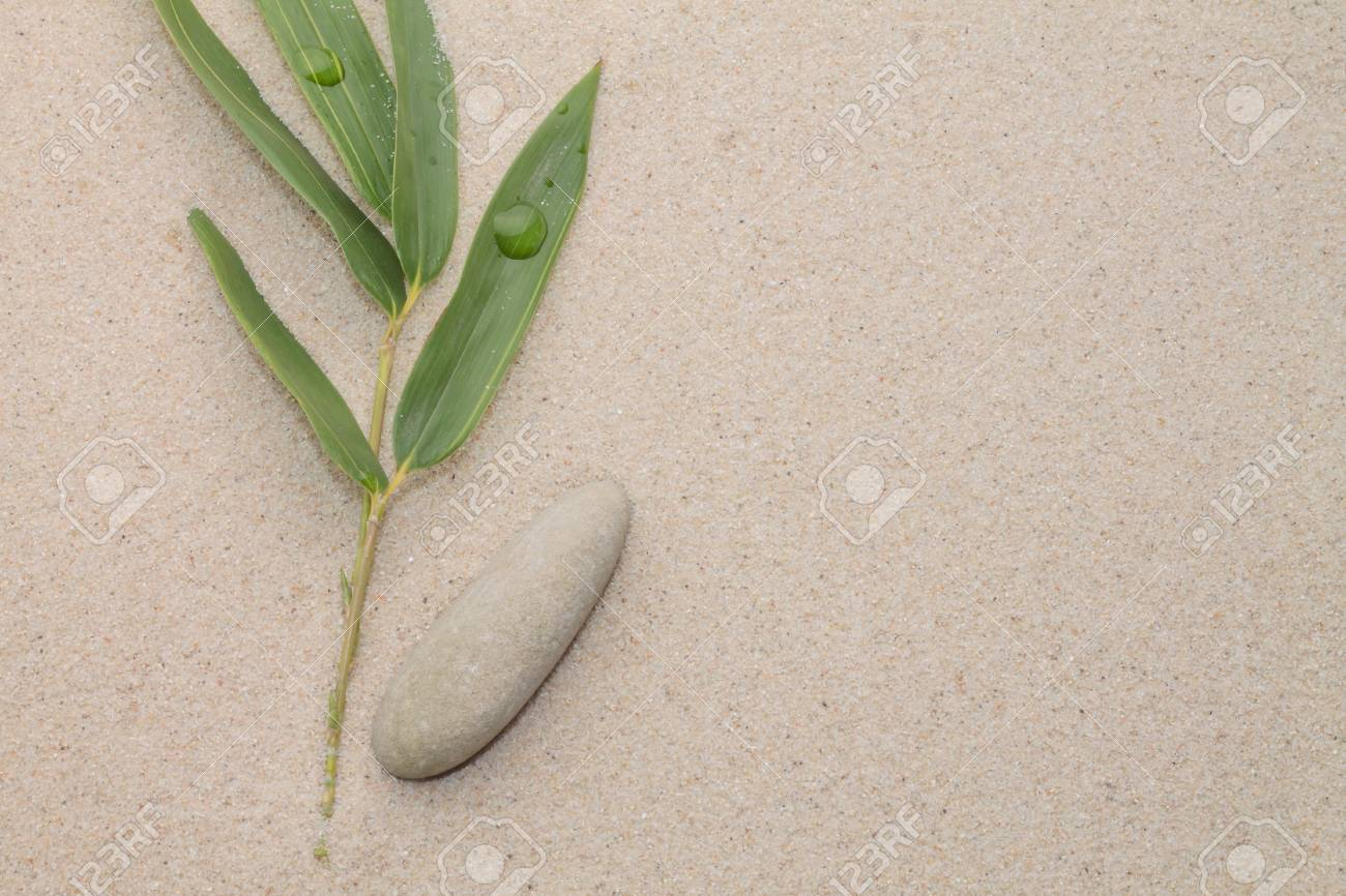 Bamboo Leafs And Zen Stone Stock Photo Picture And Royalty Free Image Image 14975810