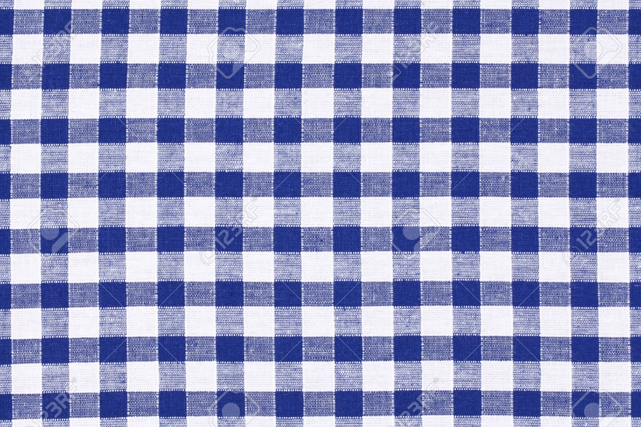 Marvelous Stock Photo   The Blue Checkered Tablecloth
