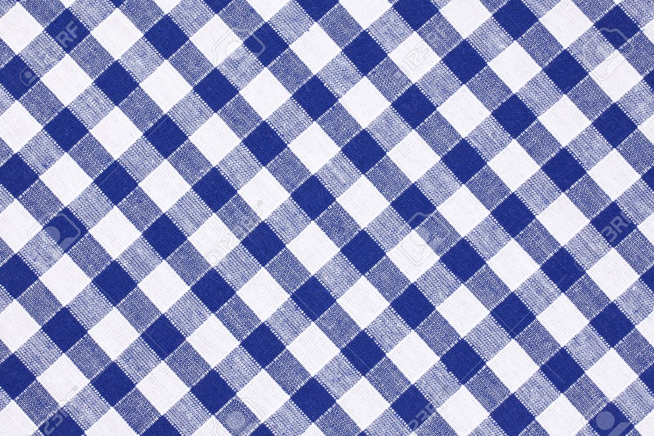 Amazing Shot Of The Blue Checkered Tablecloth Stock Photo   7266621