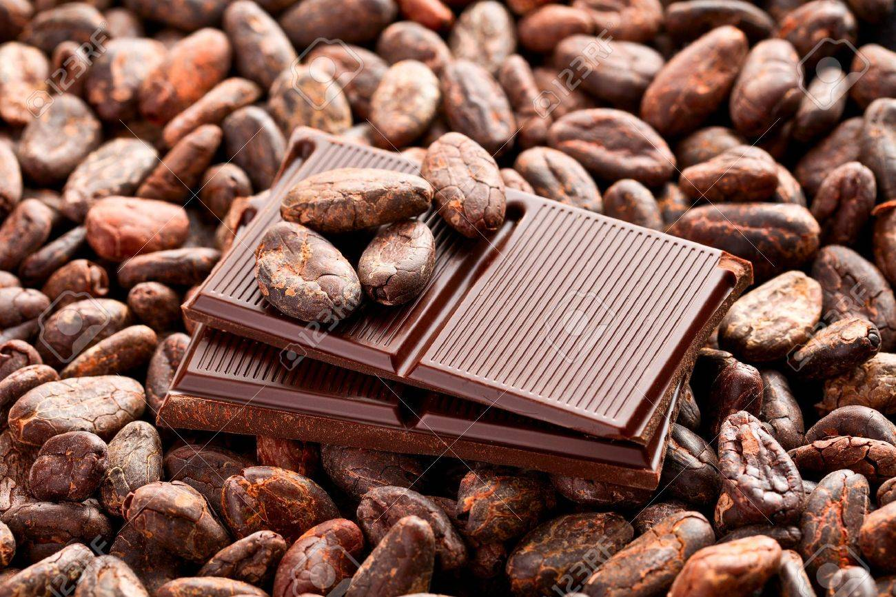 The Brown Chocolate And Cocoa Beans Stock Photo, Picture And ...
