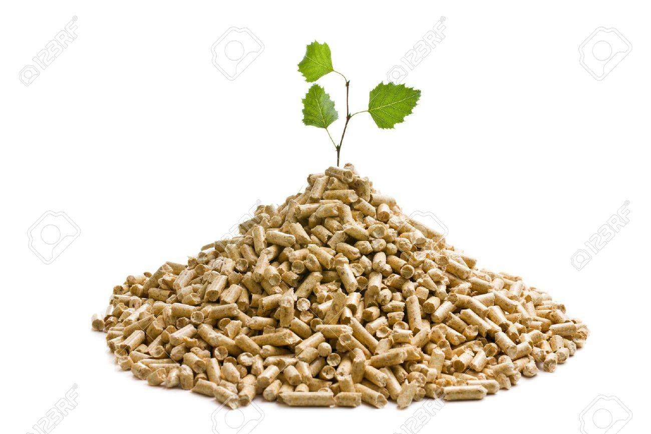the wooden pellets  ecological heating Stock Photo - 14512876