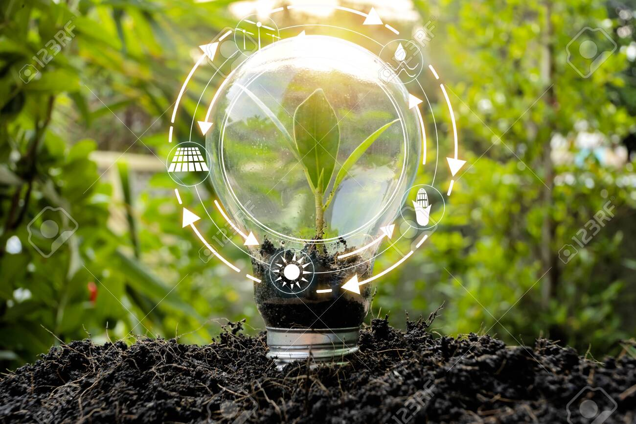 Trees that are growing in bulbs front of global show the world's consumption with icons energy sources for renewable, sustainable development. Ecology concept. - 124532465