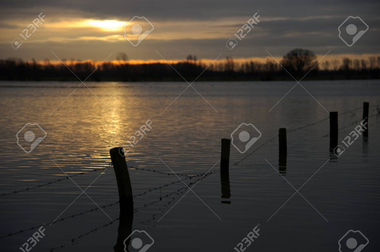 High water floods the meadows in the Netherlands Stock Photo - 12154956