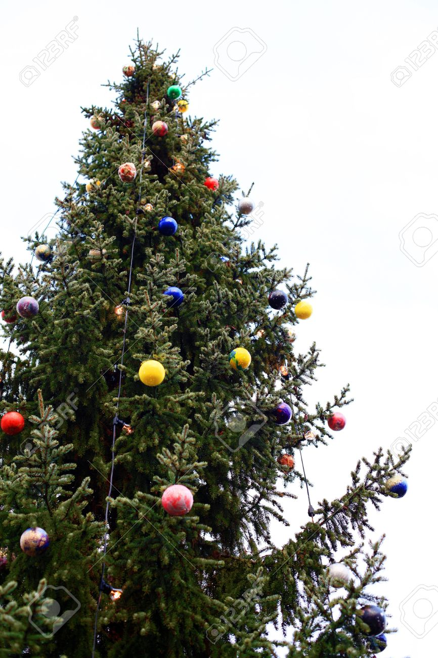 outdoor christmas tree decoration for multiple uses stock photo 6067373