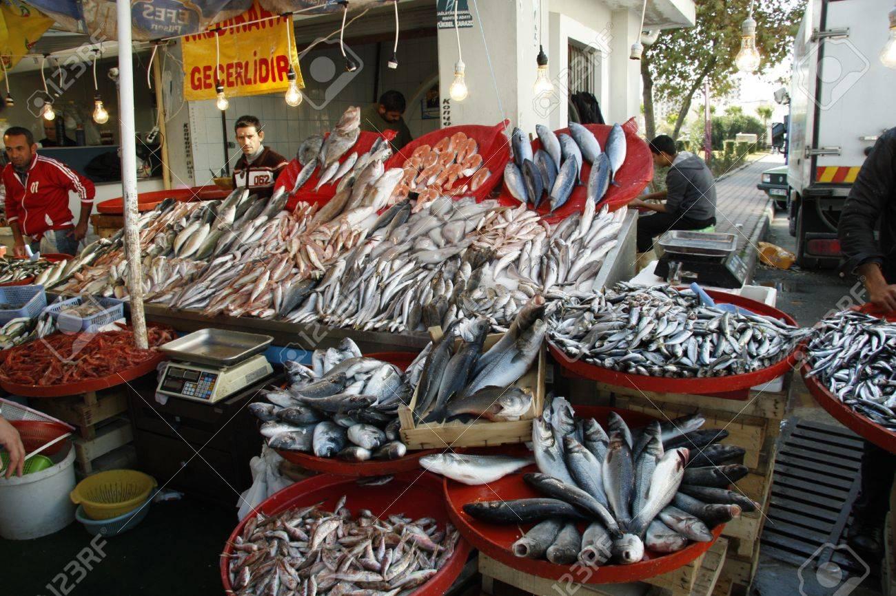 Fresh fish at the market, Antalya, Turkey - 27.11.2011 Stock Photo - 13256994