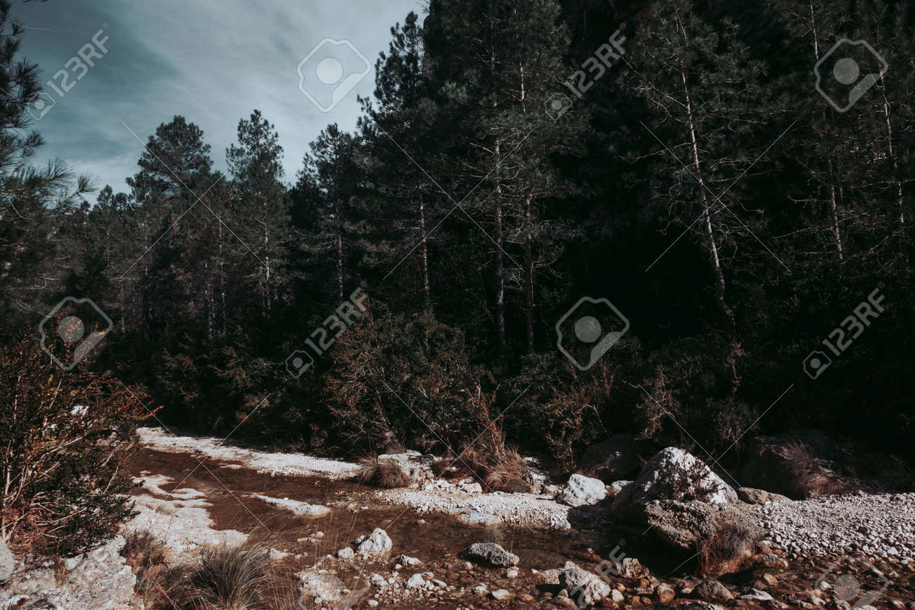The Gubies in Parrisal Canyon. The Ports Mountains. Teruel province - 167863770