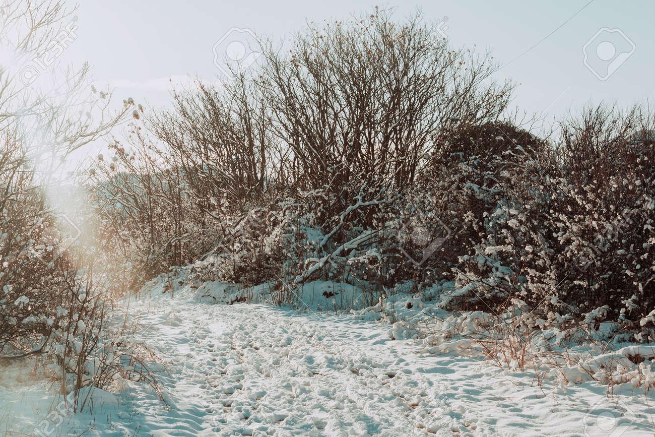 Snowy fields in Matarranya. Teruel province. Spain - 166686398