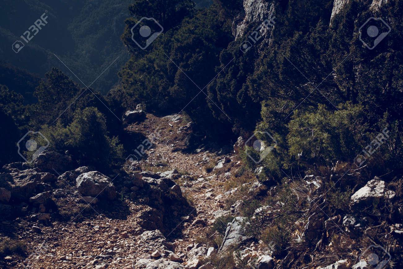 Path to Galera Peak. Teruel province. Spain - 166687480