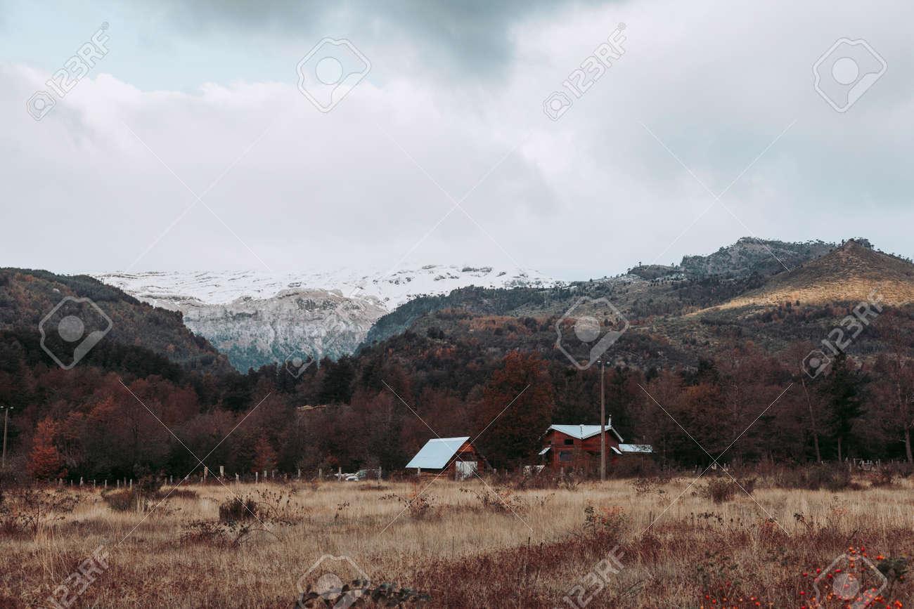 Winter in Conguillio Park. Chile - 166686485