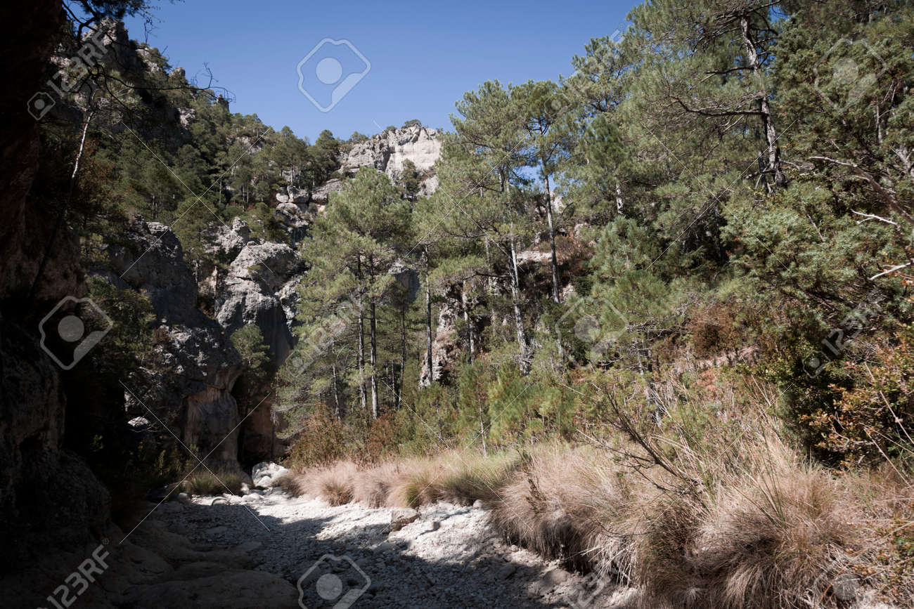 The Gubies in Parrisal Canyon. The Ports Mountains. Teruel province - 166728599