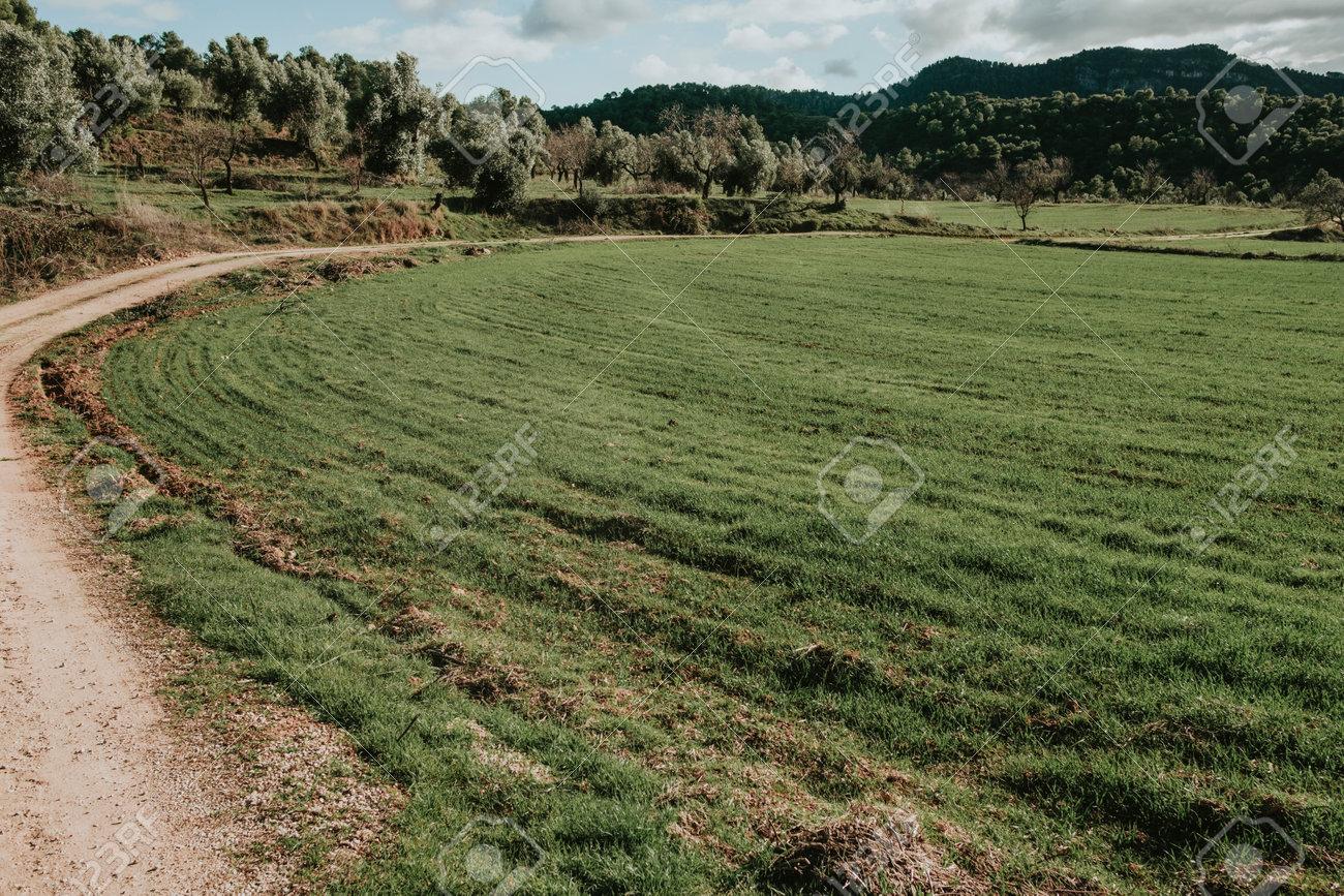 Fields in Matarranya. A region of the province of Teruel, Spain - 170463118