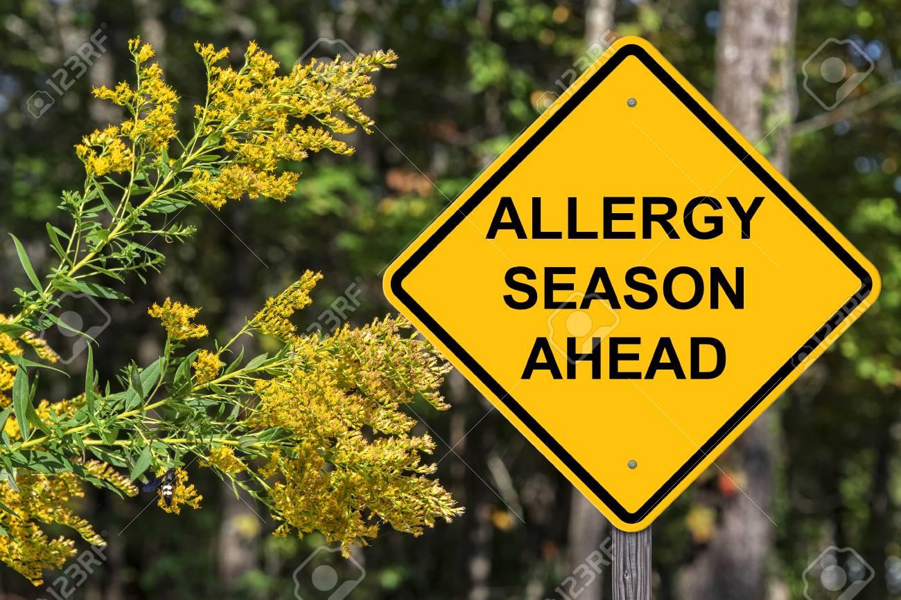 Caution Sign - Allergy Season Ahead - 87336274