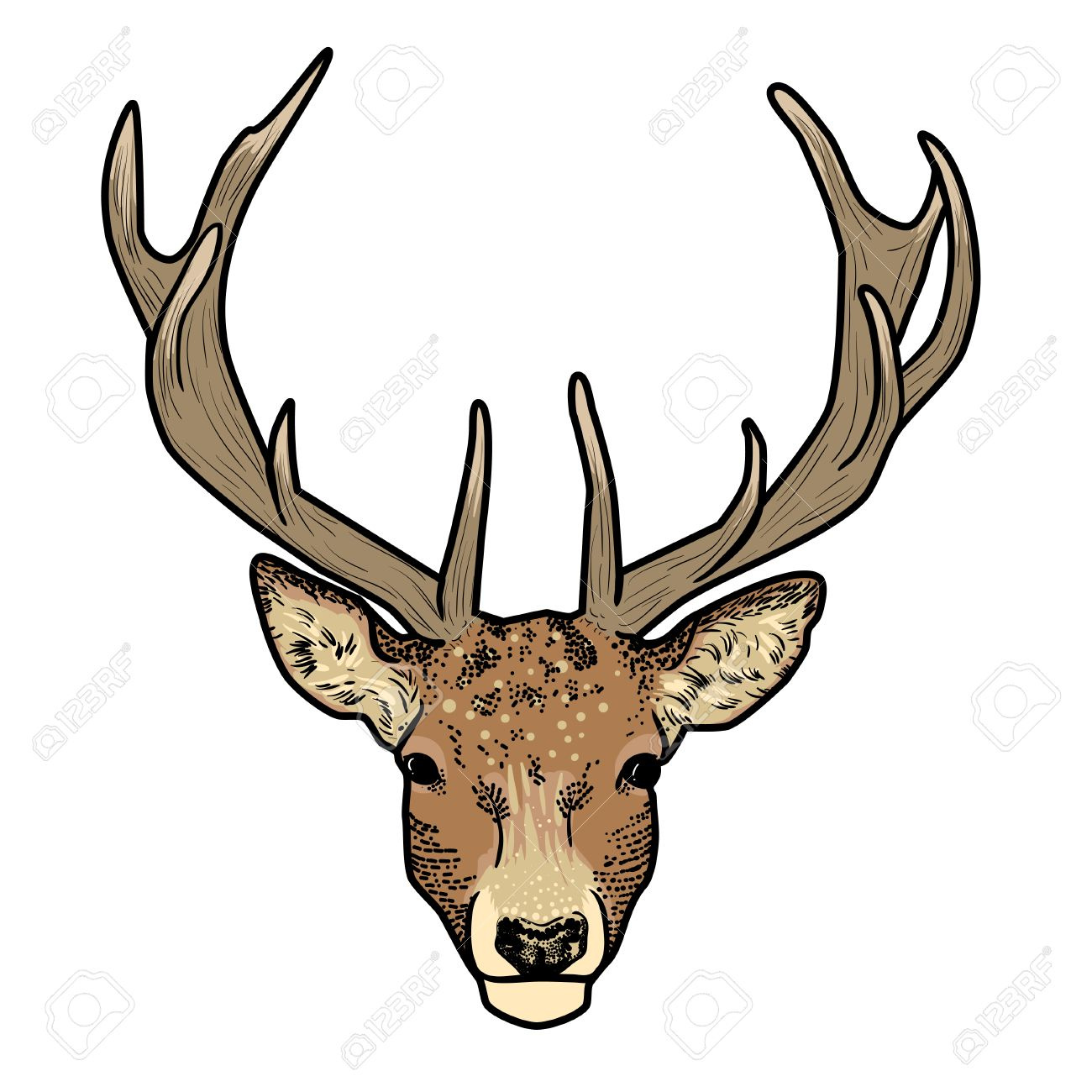 Image result for CARTOON DEER WITH ANTLERS