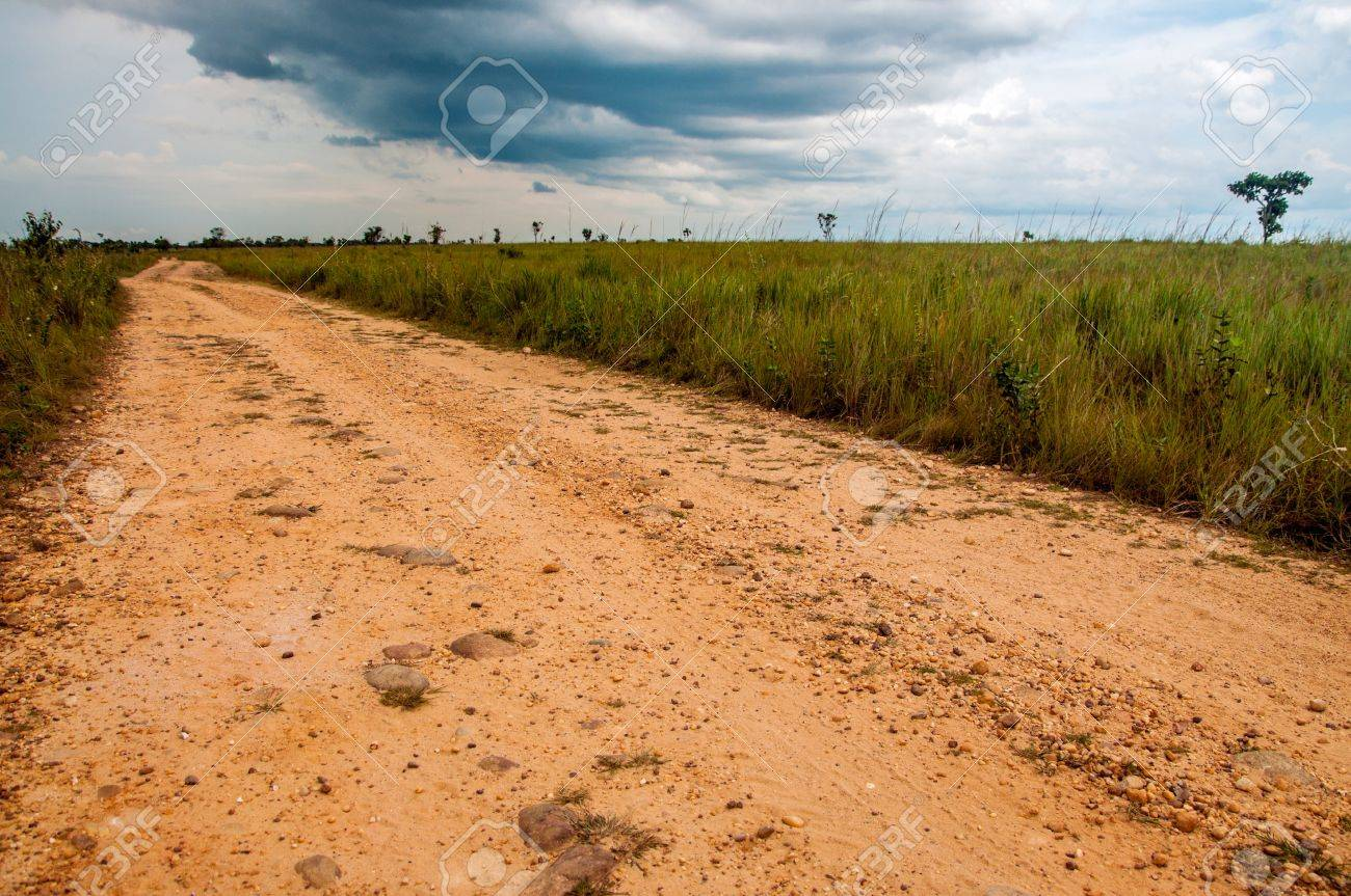 A dirt road built by FARC rebels in the Colombian plains Stock Photo - 15581660