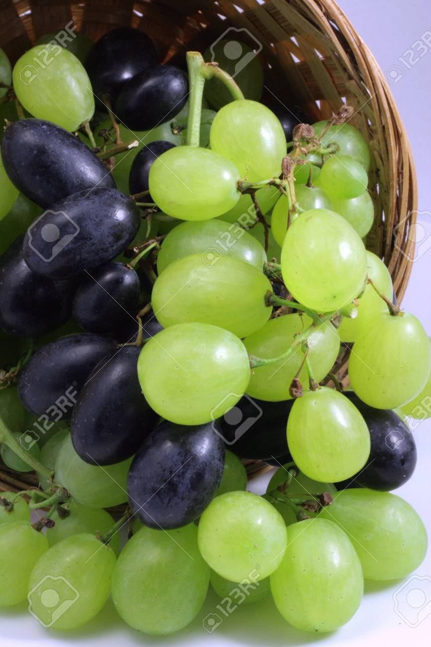 Tasting of wine and bunches of grapes Stock Photo - 8398275