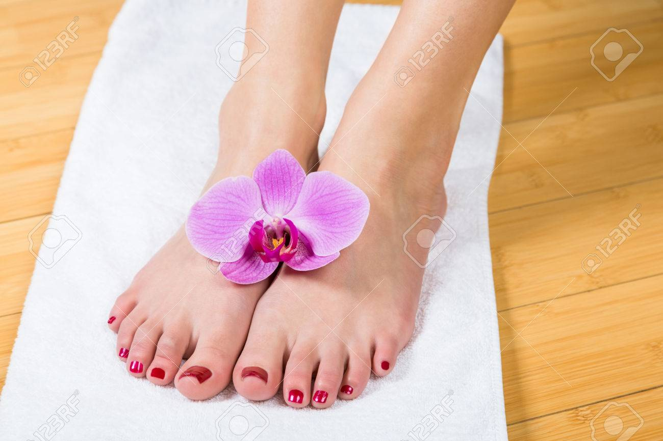close up on neatly painted toenails on female feet with purple flower between them over white