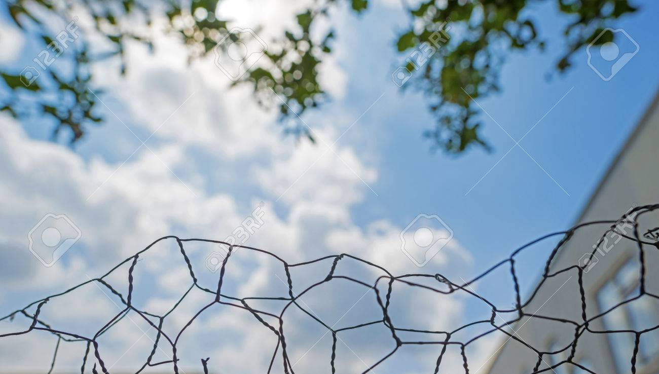 Chicken Wire As An Abstract Art In A Fence Stock Photo, Picture And ...