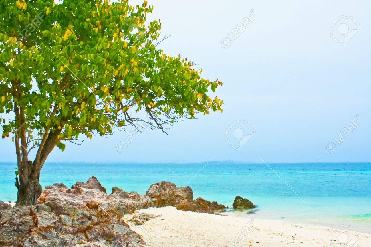 Calm blue ocean at koh samet thailand - 10724200