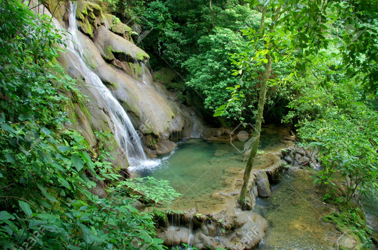 Palenque rainforest waterfall Stock Photo - 22958266