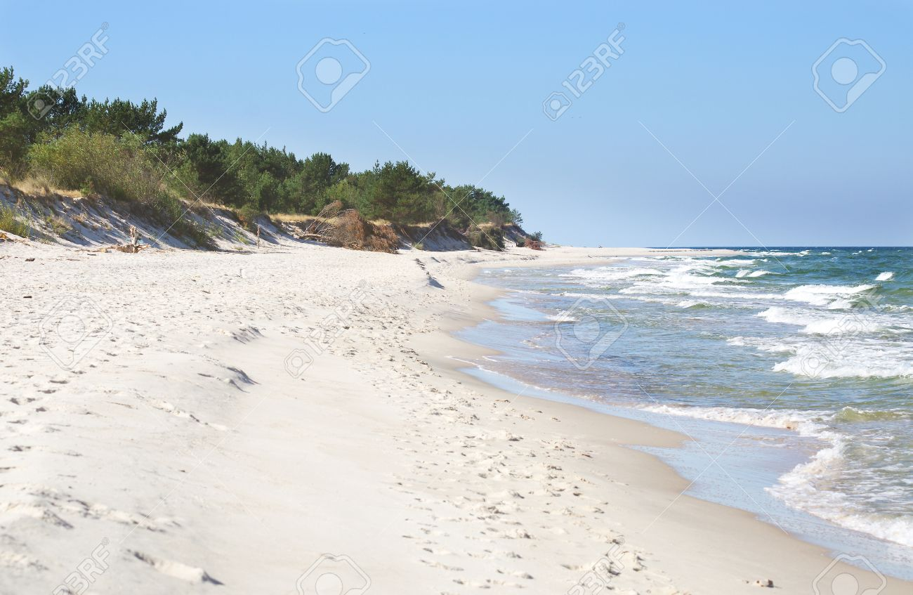 white sand beach with wild dunes hel poland stock photo picture