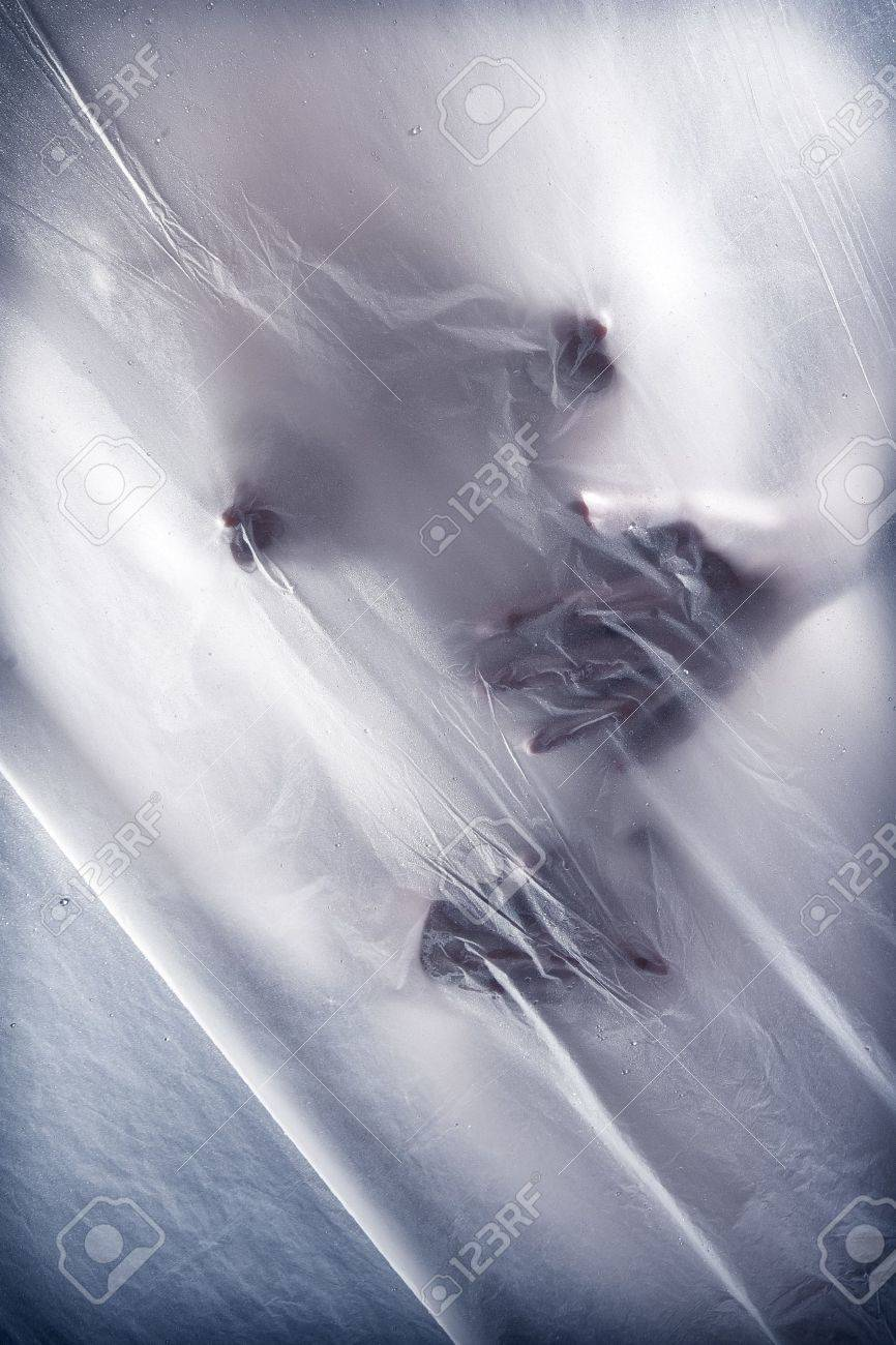 Sexy young woman touching herself behind transparent wet curtain Stock Photo - 7608889