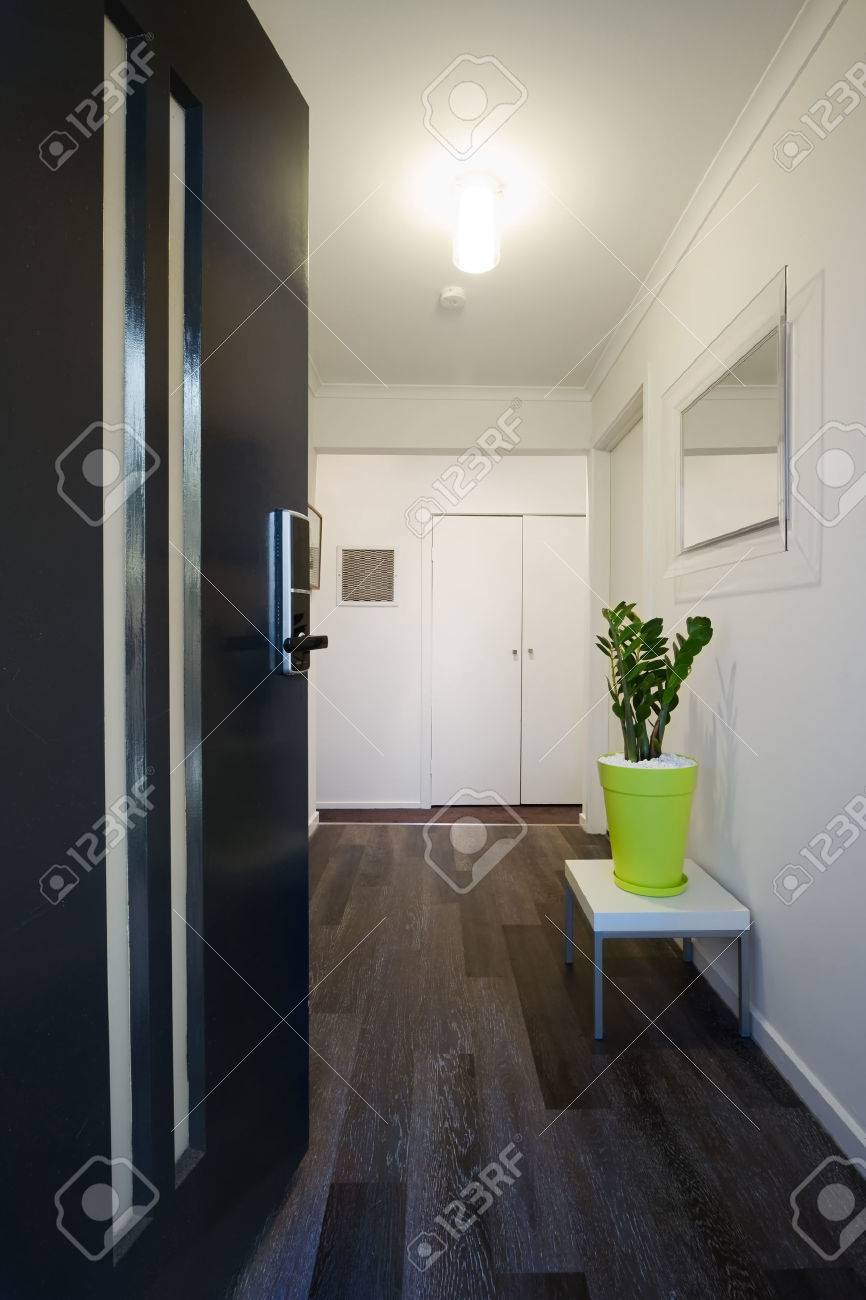 Welcoming Contemporary Home Entrance Front Door And Hallway Stock ...