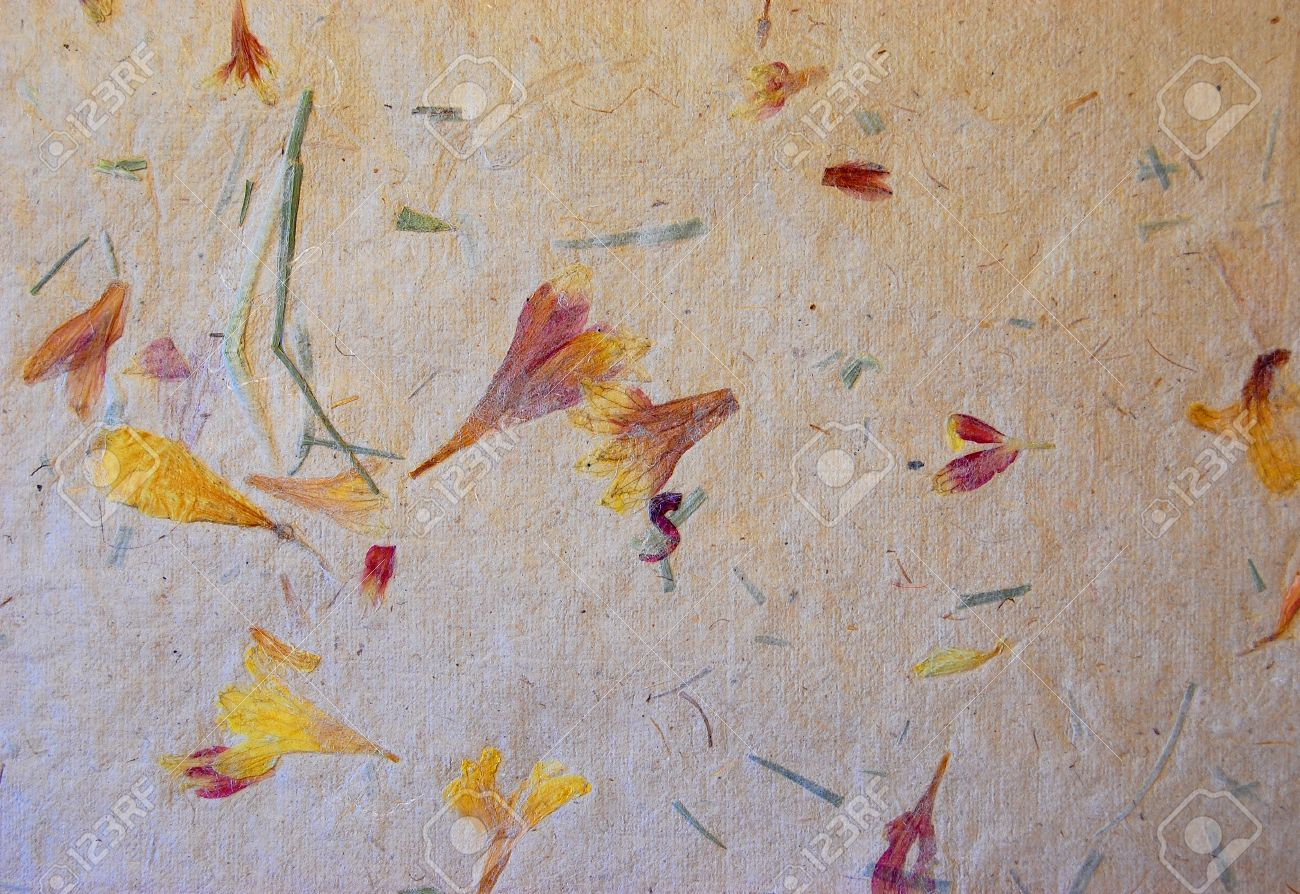 A Photograph Of Homemade Paper With Bits Of Flowers And Leaves