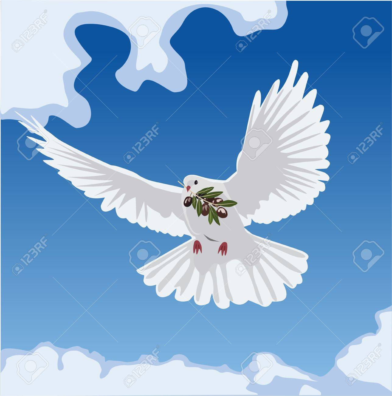 Catholic baptism stock photos royalty free business images dove with olive branch biocorpaavc Image collections