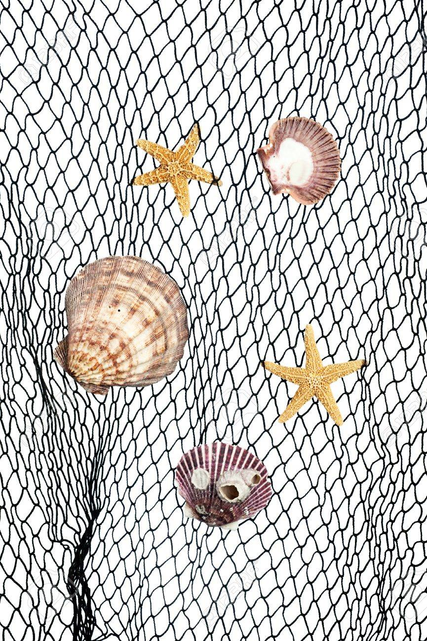Decorative Fish Netting Seashells And Starfish Caught In A Green Fishing Net For Use