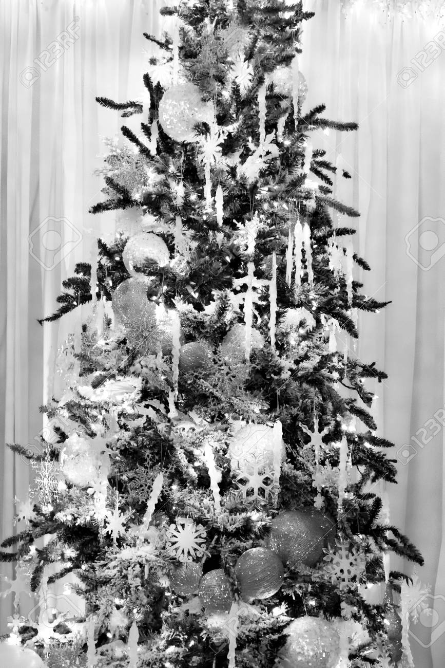 Foto Alberi Di Natale Bianchi albero di natale coperto decorato con ornamenti scintillanti d'argento e  dietro è una finestra con tenda di colore bianco morbido da cima a fondo