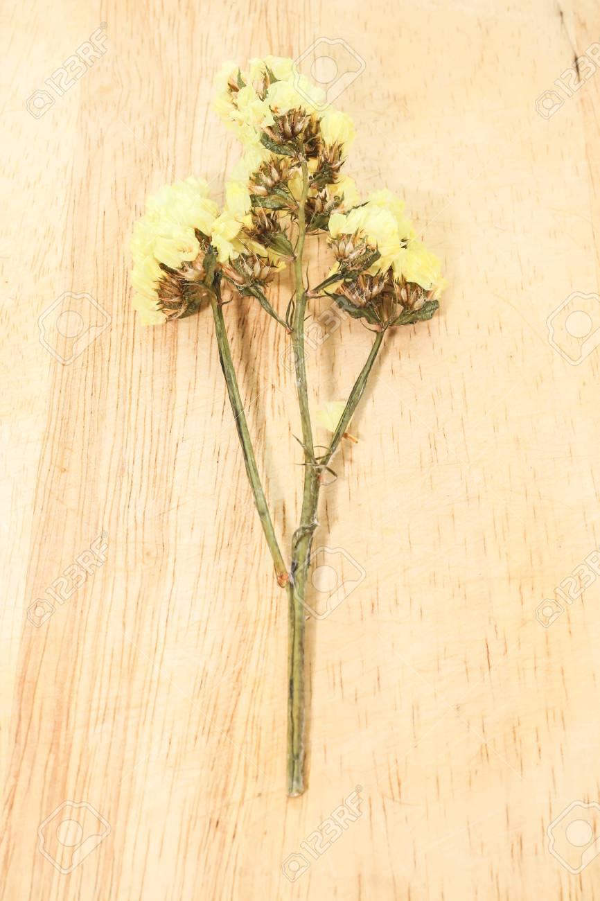 Closeup single yellow statice flower background use for decoration closeup single yellow statice flower background use for decoration on brown wooden stock photo 97948426 mightylinksfo