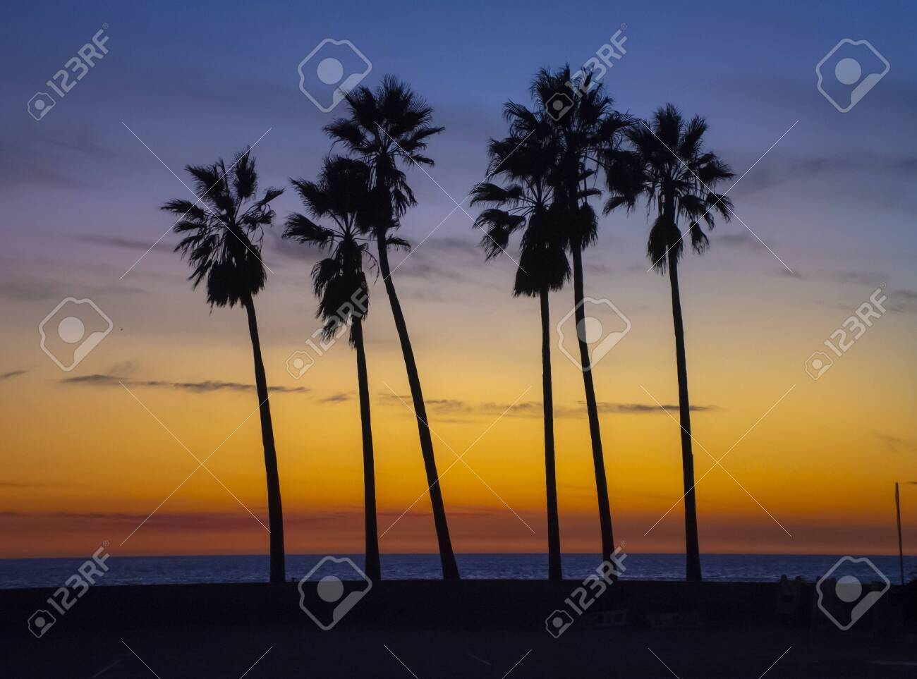 Palm trees against beautiful sunset. - 122248741