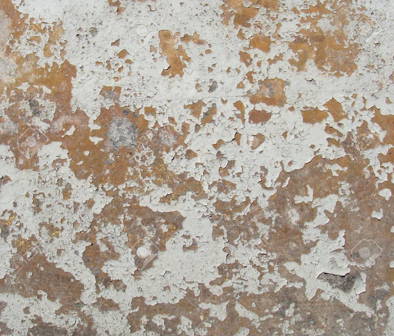Portés Orange Mur Peint Blanc Gris Avec Mot De Puce De Peinture ...