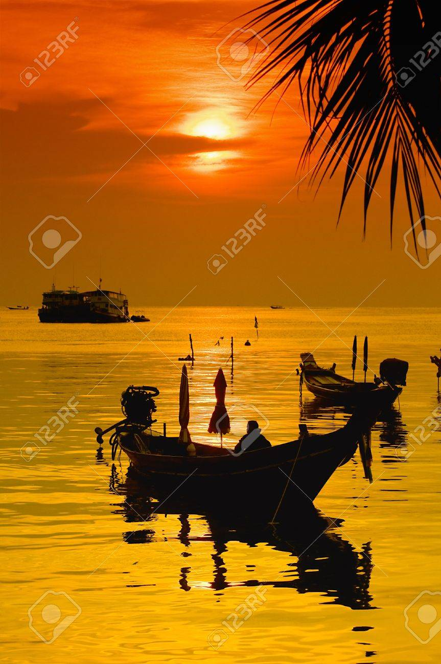 Sunset with palm and longtail boats on tropical beach. Ko Tao island, Thailand Stock Photo - 7253089