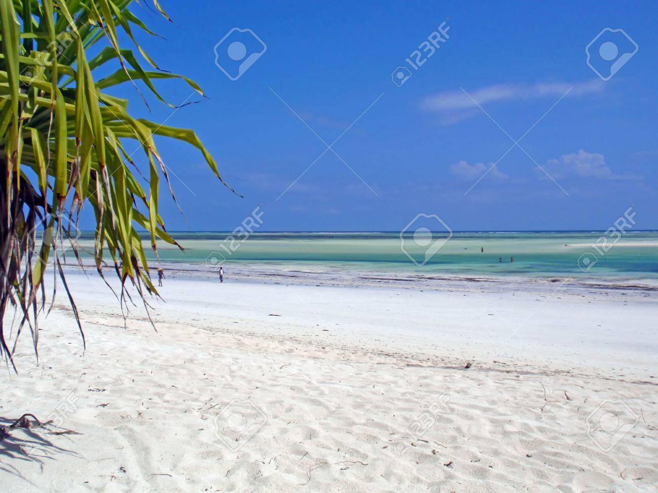 A deserted beach on the tropical island of Zanzibar. Stock Photo - 9629142