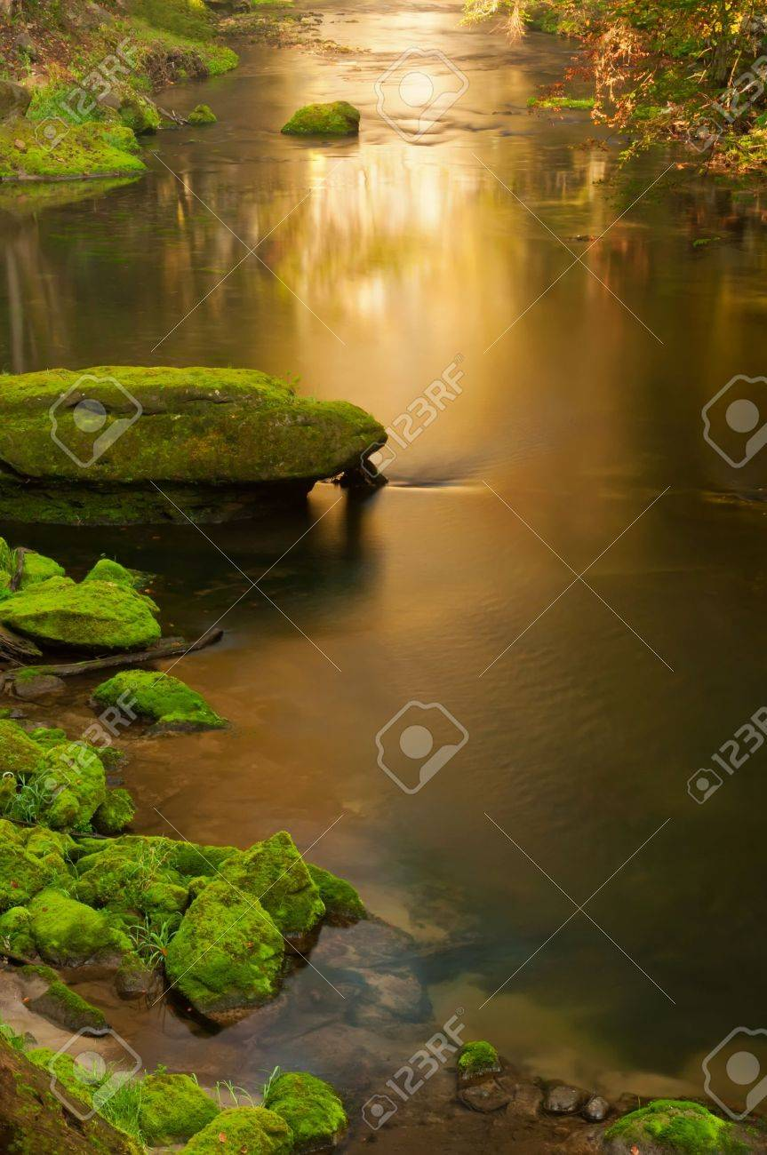 View of a beautiful creek during the sunny day. Stock Photo - 11777313