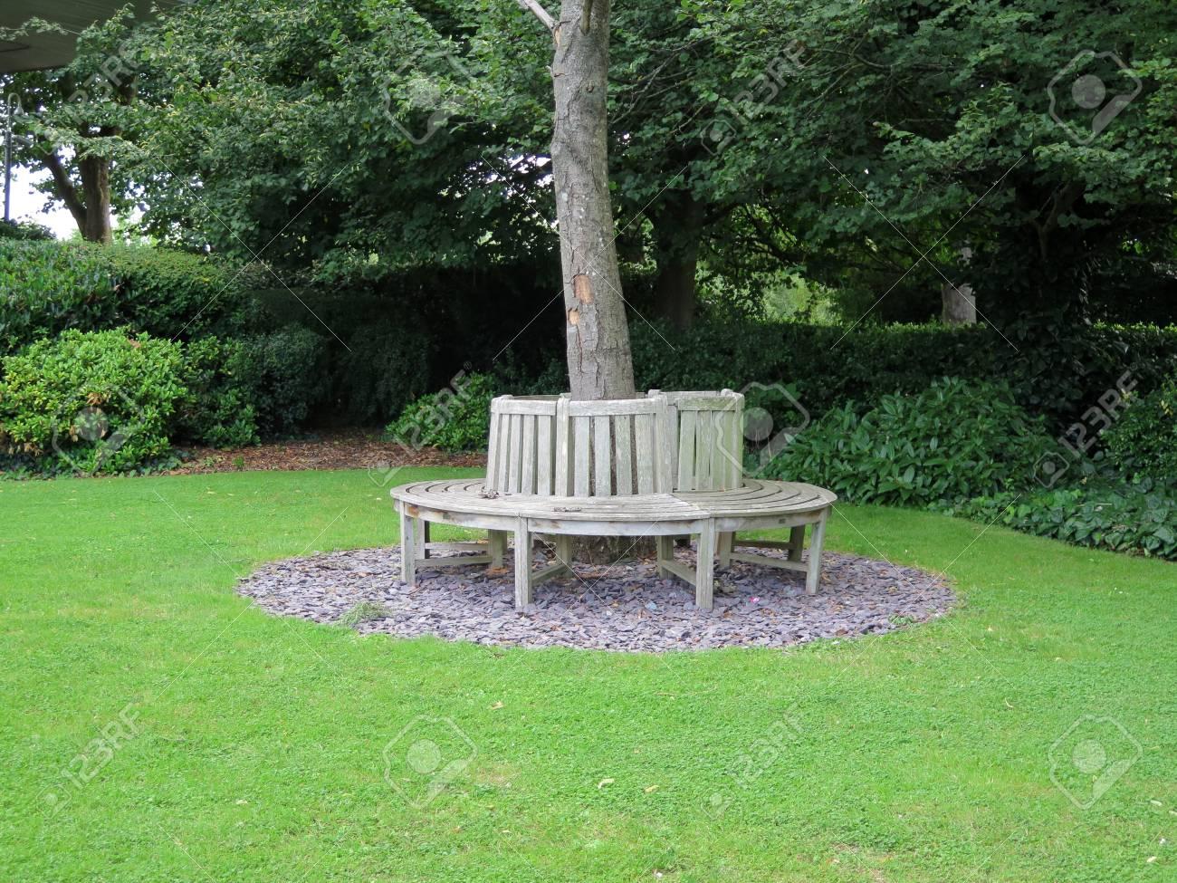 Banc Circulaire En Bois Autour Darbre Dans Le Jardin Sur Les Rives
