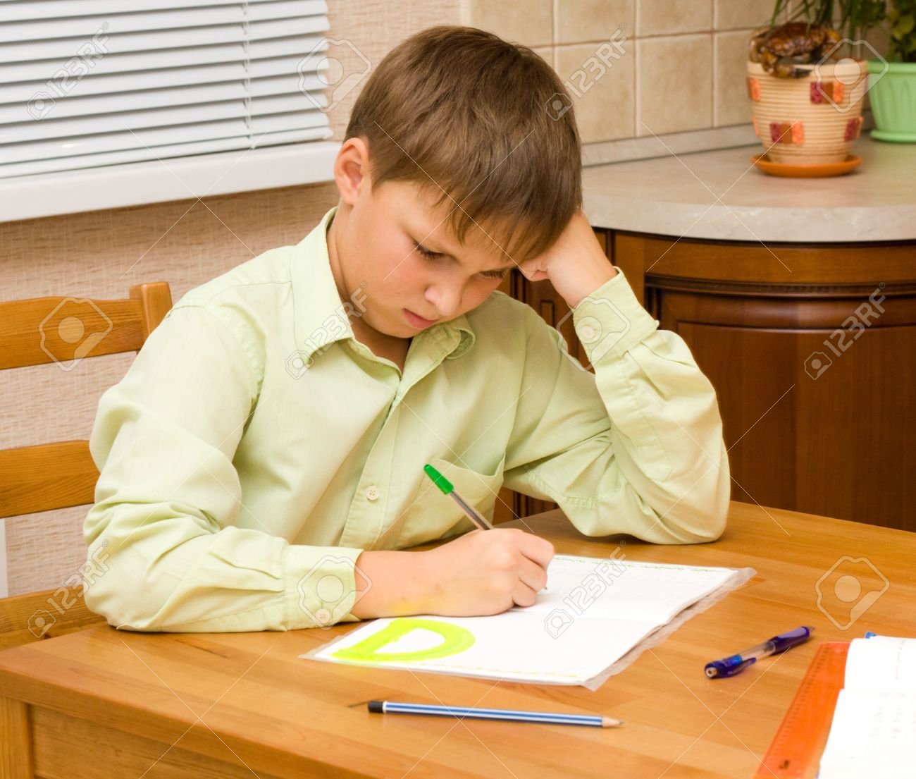 what is a web essay expository