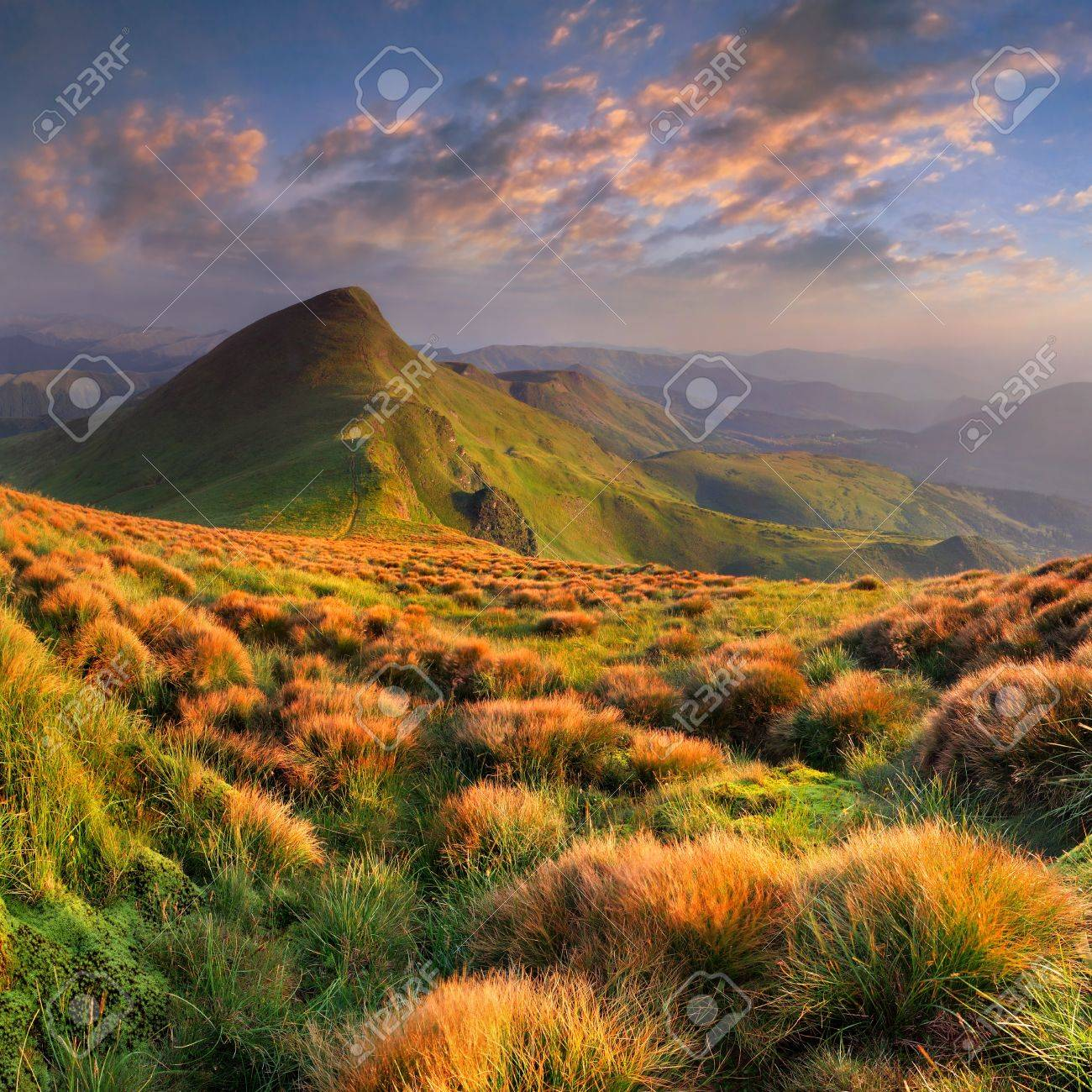 Beautiful summer landscape in the mountains. Sunrise - 10601640