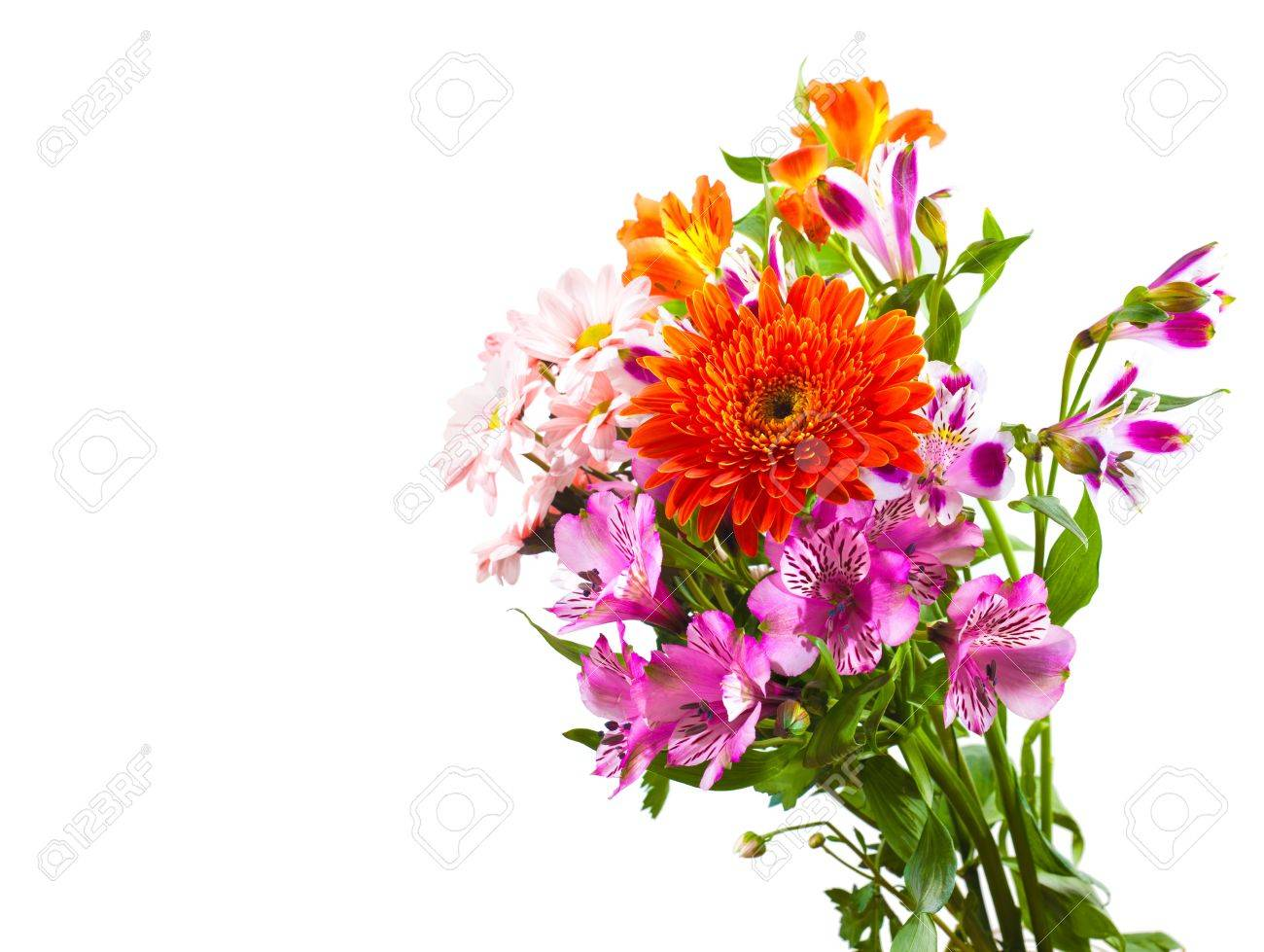 Bright Flower Bouquet Isolated Over White Background Stock Photo ...