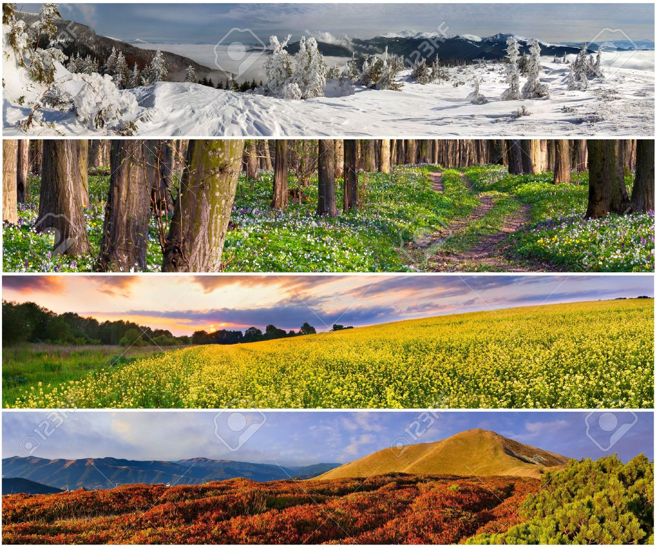 Set of the 4 seasons landscape for banners Stock Photo - 13700554 - Set Of The 4 Seasons Landscape For Banners Stock Photo, Picture And