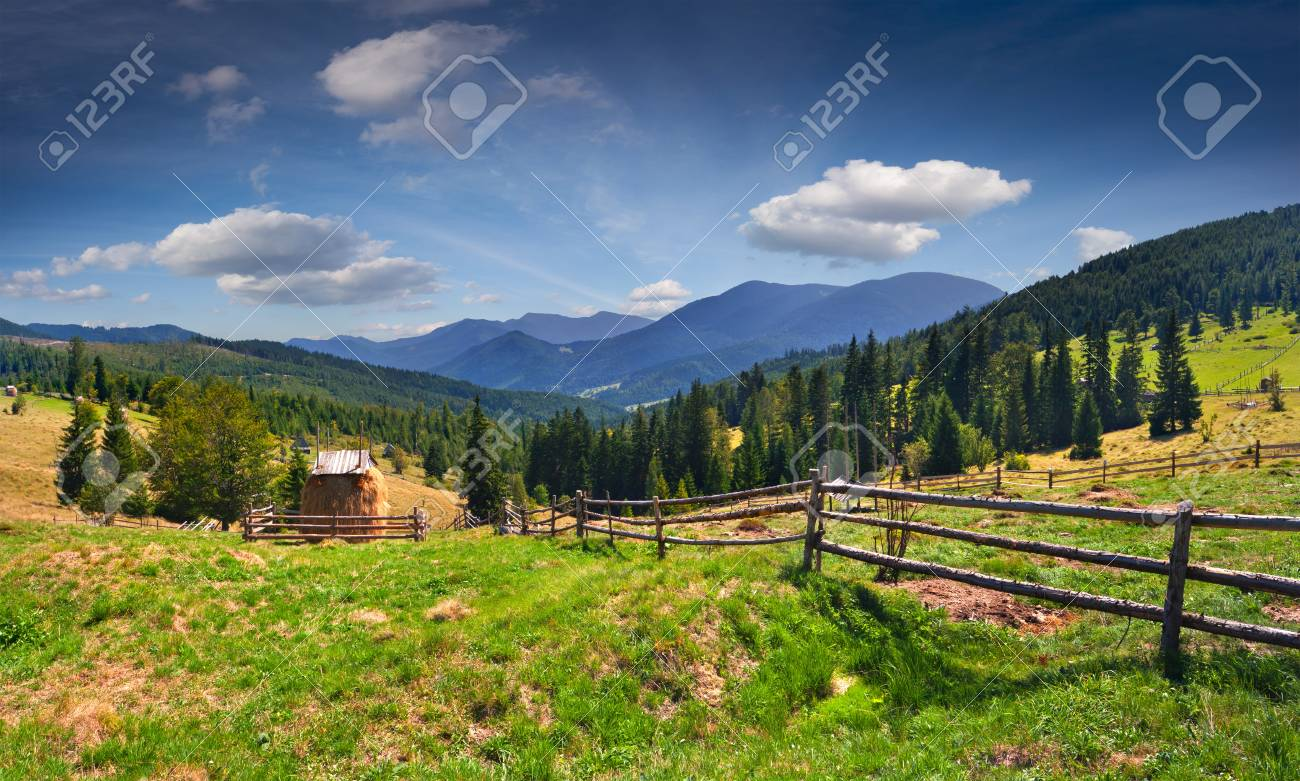 Beautiful summer landscape in the mountains at summer Stock Photo - 16602508