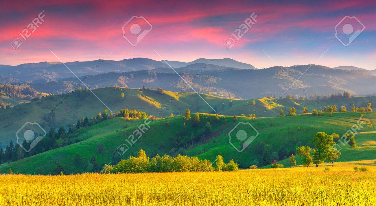 Colorful summer sunrise in the Carpathian mountains with rolling hills and valleys in golden morning light - 35330473