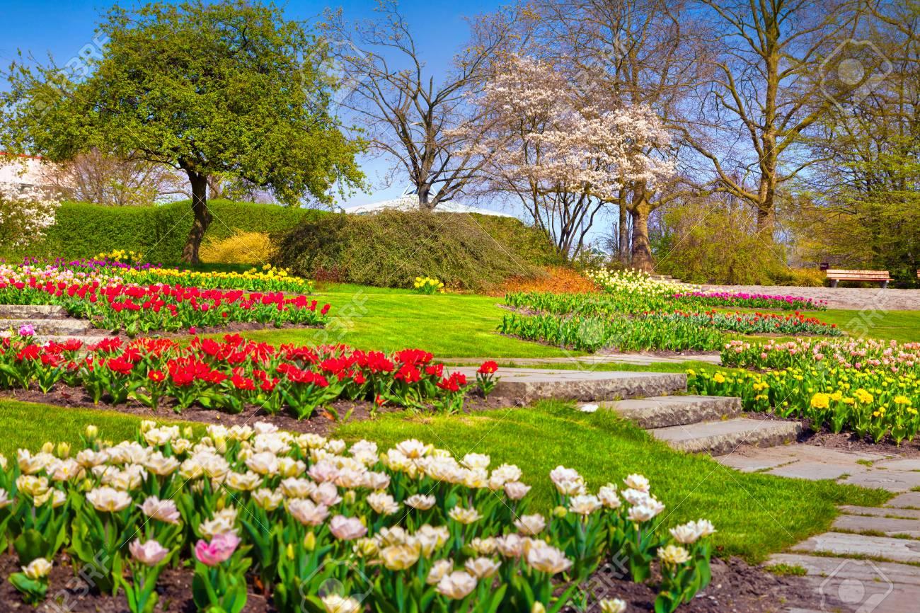エッセン植物庭町日当たりの良い春の朝。ドイツ、ヨーロッパの美しい ...